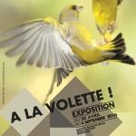 AFFICHE-A-LA-VOLETTE