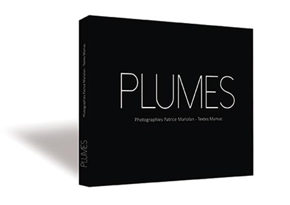 PLUMES_3D_Site